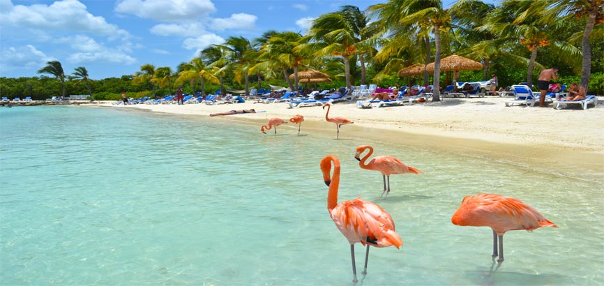 Kust van Aruba
