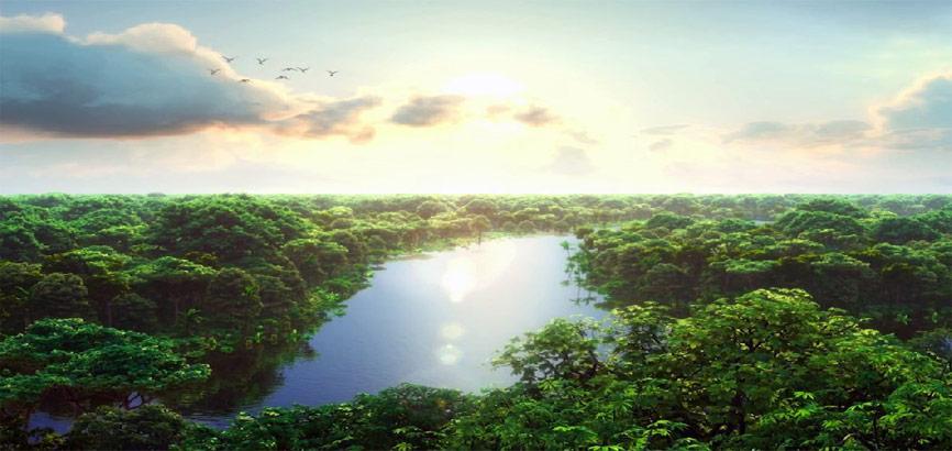 Uitzicht over Amazone