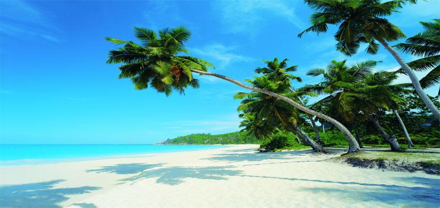 strand in Palm beach