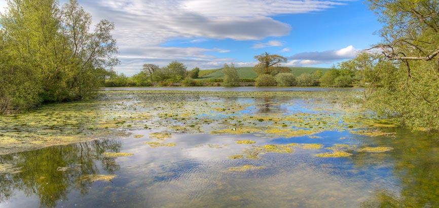 Stephenstown Pond Nature Park uitzicht
