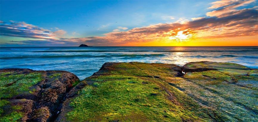 Kust van Auckland