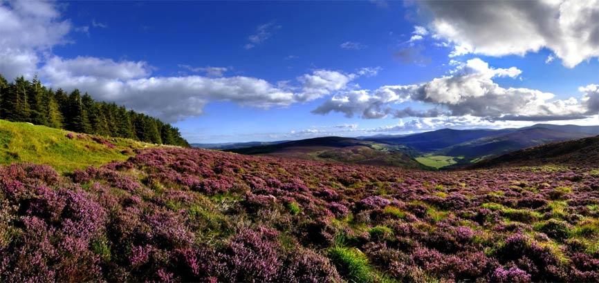 Wicklow Mountains in Zuidoost Ierland