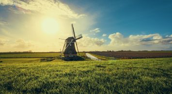 Dit zijn de grootste steden van Nederland in 2019