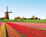 De mooiste plekjes van Nederland om op vakantie te gaan!