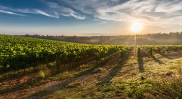 Wat te doen in Toscane: Dit moet je echt zien in Toscane